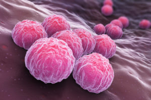 Chlamydia is the most common STI in Catalonia among young women between 18-24